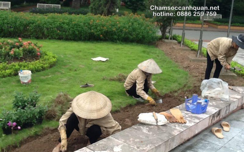 thi-cong-canh-quan-khu-do-thi-huyndai-hillsate-08-16 07.59.06