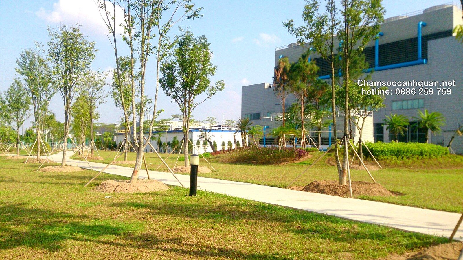 Cảnh quan nhà máy Samsung Bắc Ninh sau 1 năm thi công