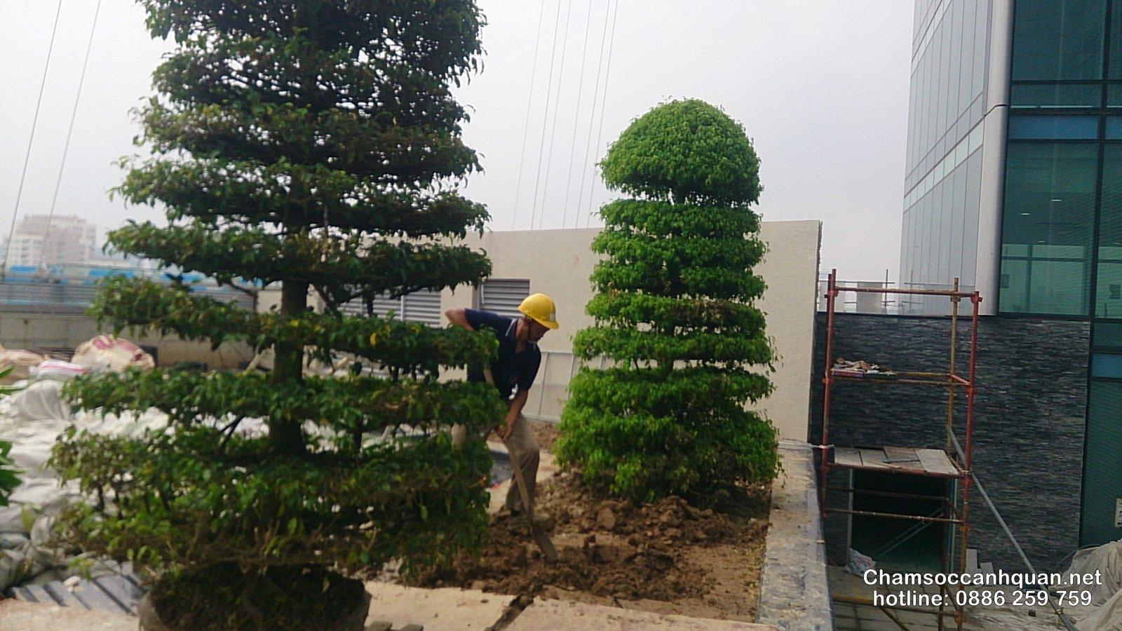 Thi công cảnh quan tầng tòa nhà Lotte Center Hà Nội