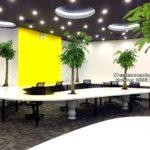 Cho thuê cây nội thất tại Hà Nội – Dự án IOT Galaxy