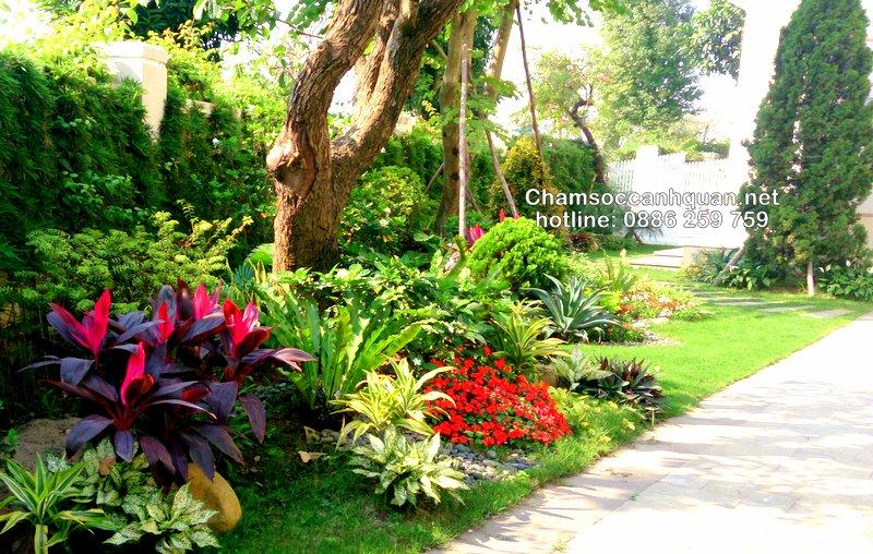 Sân vườn biệt thự Vinhomes 1