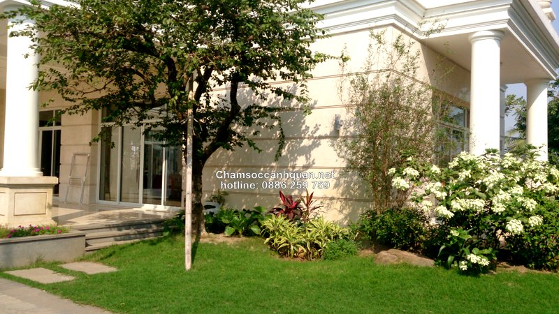 Sân vườn biệt thự Vinhomes 2