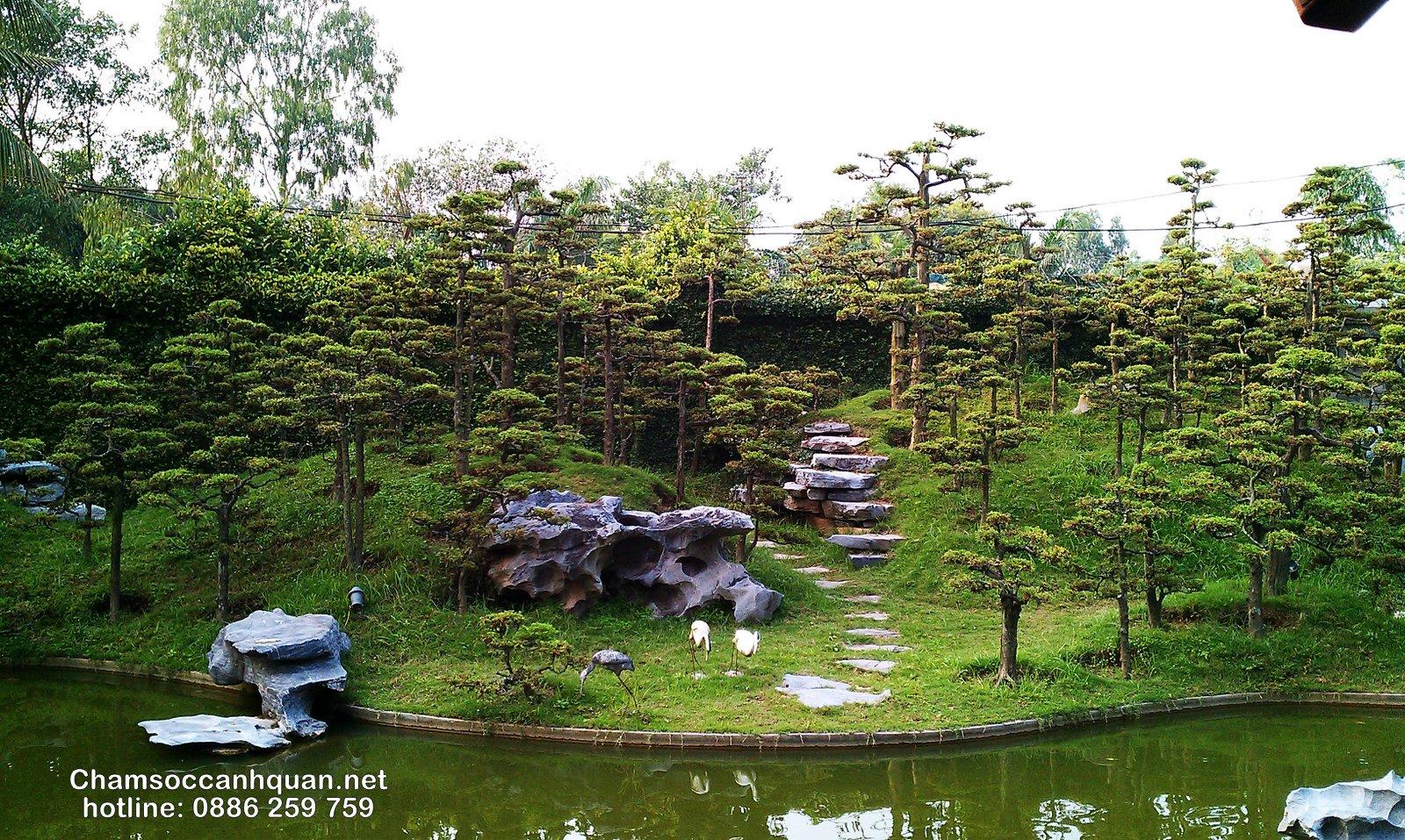 Đồi tùng và hồ nước là điểm nhấn trong sân vườn Sóc sơn
