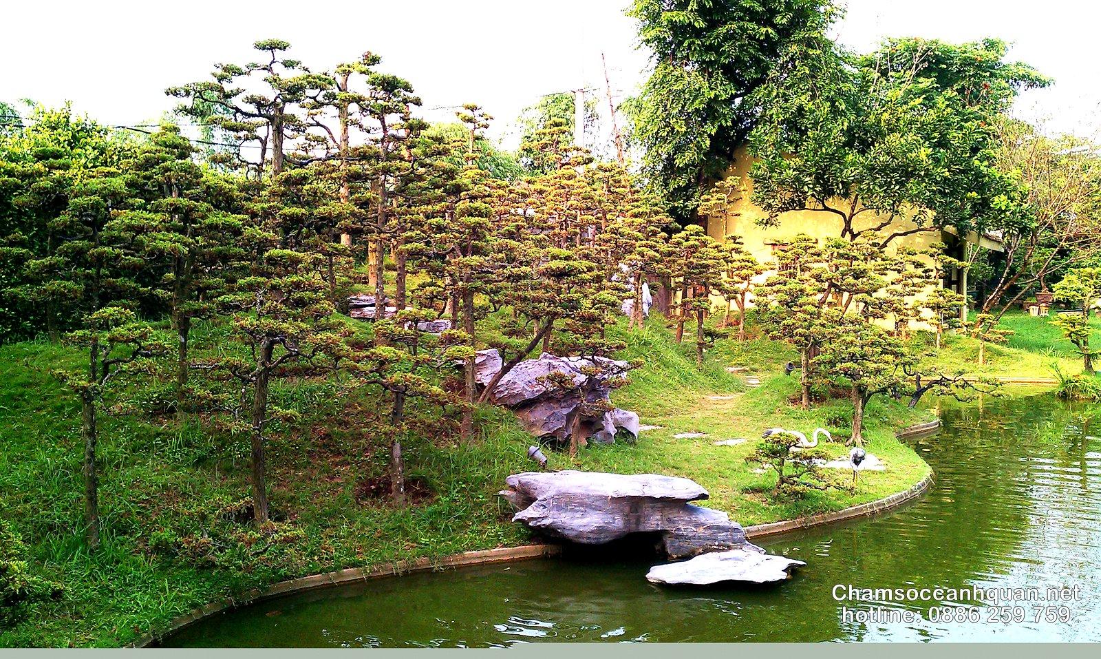 Thi công sân vườn biệt thựThi công sân vườn biệt thự đẹp tại sóc sơn