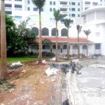 Trồng cây khách sạn Deawoo Hà Nội
