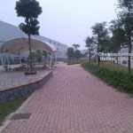 Thi công cảnh quan nhà máy Samsung Thái Nguyên