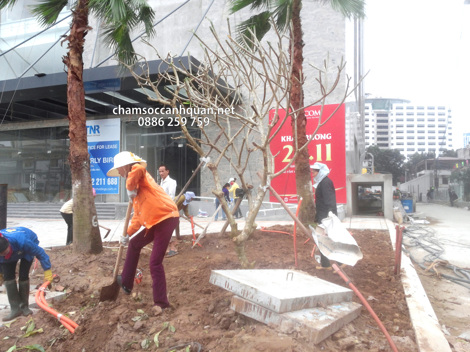 Thi công cảnh quan Vinhomes Nguyễn Chí Thanh - SalalaGreen
