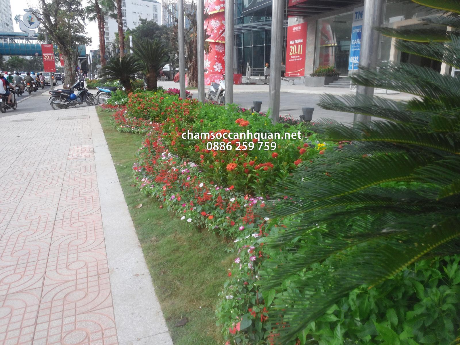 Thi công cảnh quan Vinhomes Nguyễn Chí Thanh