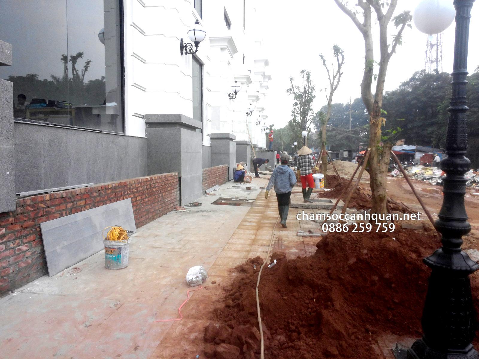 Thi công cảnh quan dự án Vincom Plaza Việt Trì - Phú Thọ