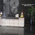 Cho thuê cây nội thất khách sạn Lotte – Đội Cấn – Hà Nội