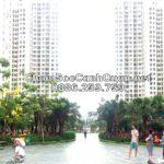 Chăm sóc cảnh quan sân vườn An Bình City