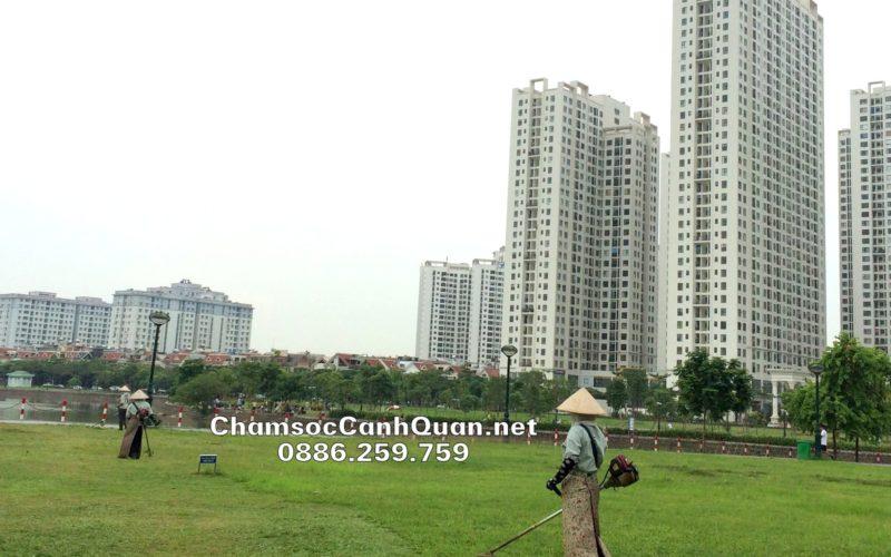 Công việc cắt và duy trì thảm cỏ được thực hiện thường xuyên tại An Bình City