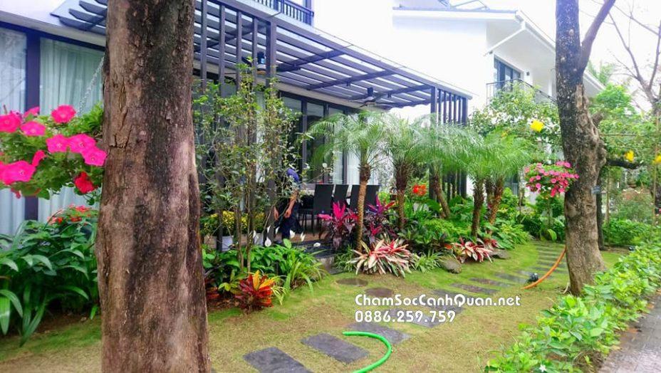 Biệt thự sân vườn Ecopark 8