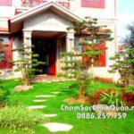Sân vườn biệt thự Nam Định – Thiết kế và thi công SalalaGreen