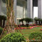 Thi công cảnh quan tòa nhà Thai Building