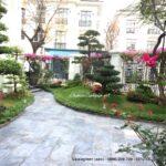Thi công sân vườn đẹp Vinhomes The Harmony HD 0422