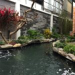Sân vườn đẹp tại Gia Lâm
