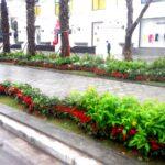 Thi công cảnh quan Vincom Plaza Việt Trì – Phú Thọ