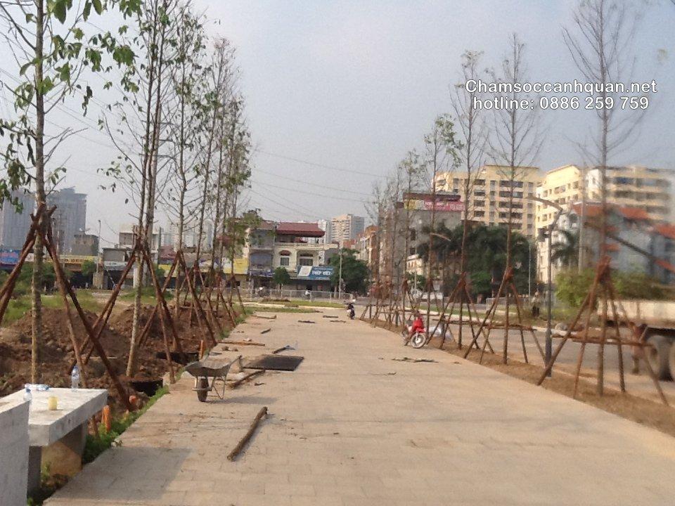 Thi công cảnh quan The Manor Hà Nội