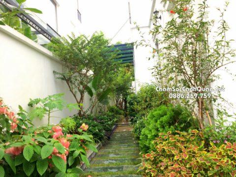 Sân vườn đẹp SalalaGreen
