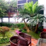 Sân vườn Ecopark -Thiết kế và thi công SalalaGreen